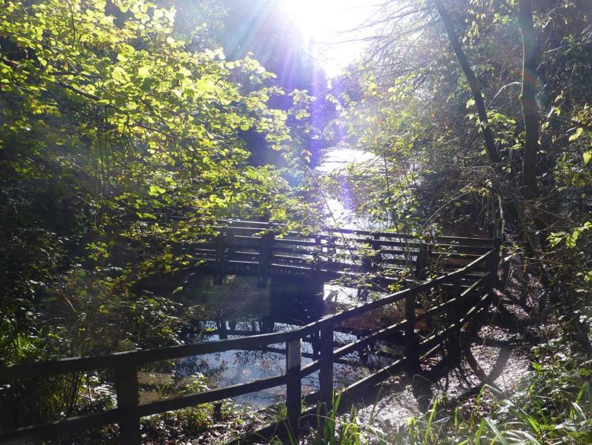 Silent Pool bridge