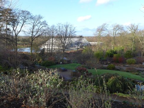 RHS Wisley in December