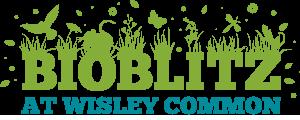 bioblitz-wisley