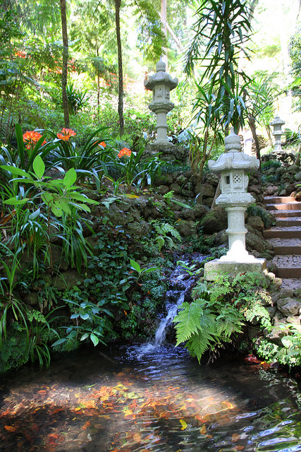 An island of flowers – Part 5: Monte Tropical Gardens – Naturanaute