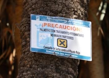 IMG_3933 Palm weevil treatment sign (Copy).JPG